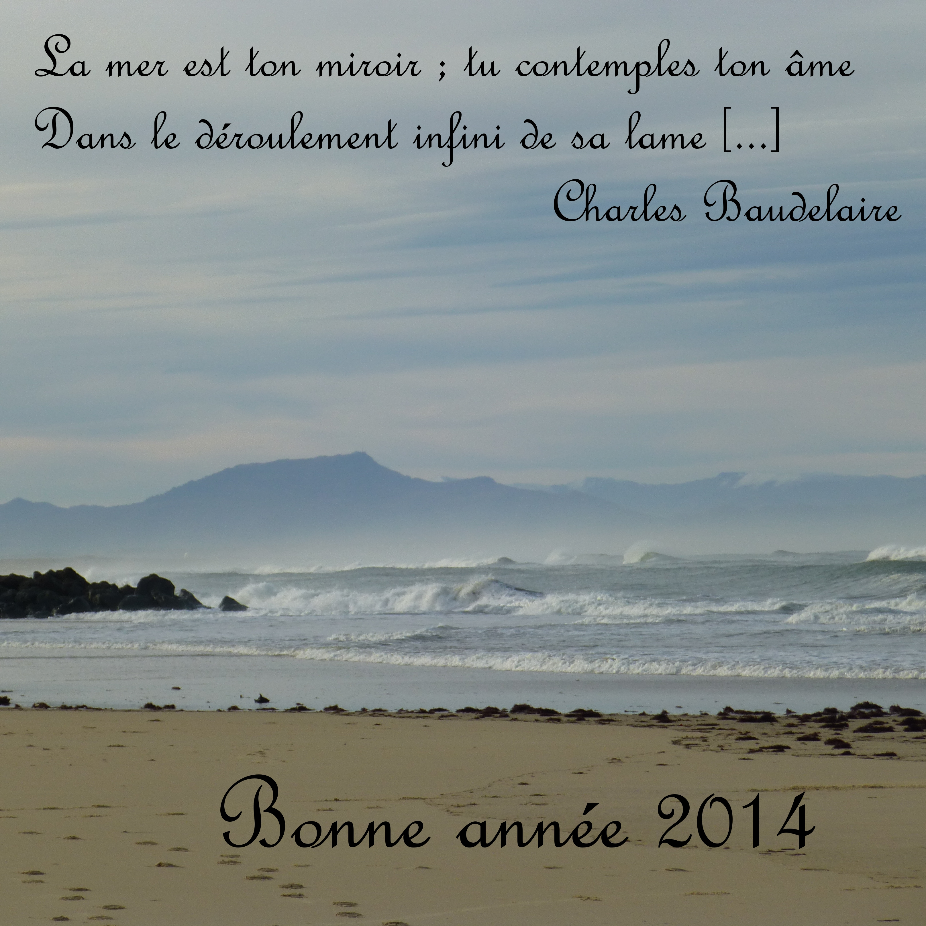 bonne année 2014 2