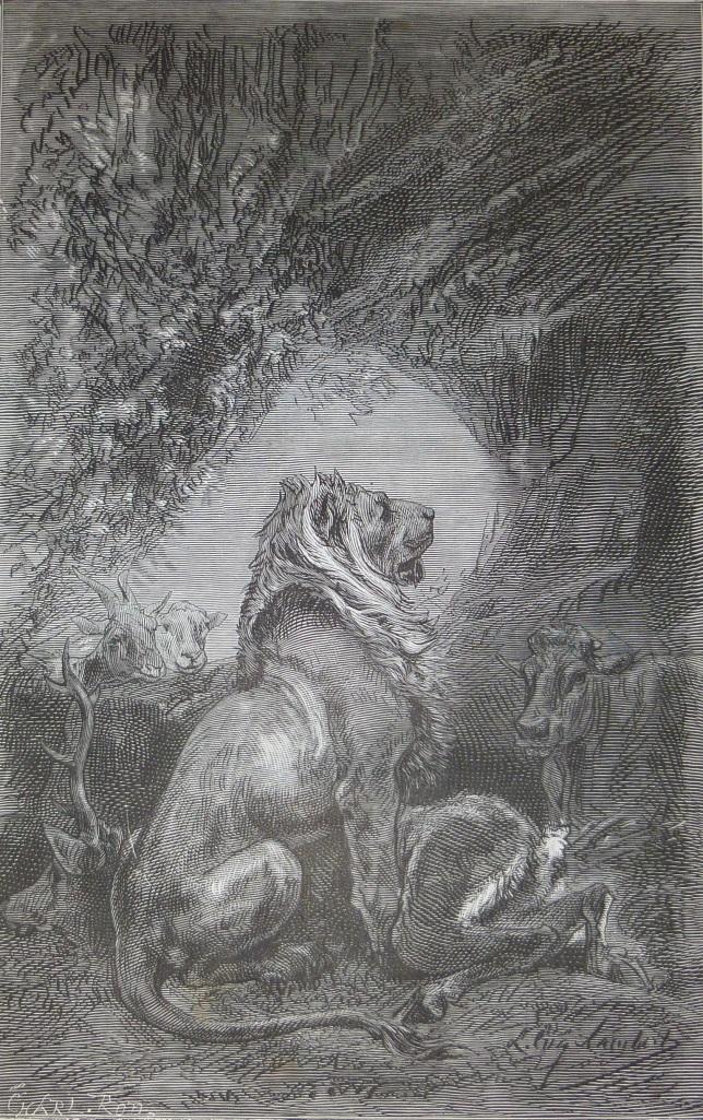 lion de Lambert