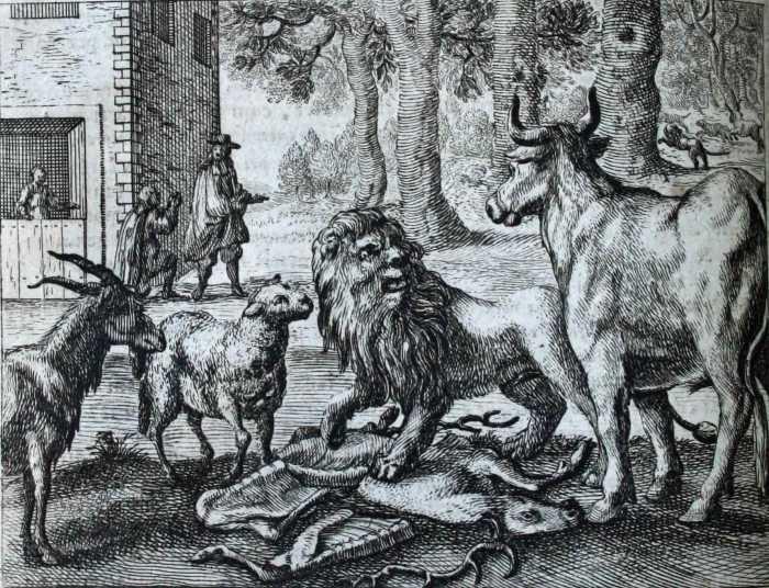 LION - PHEDRE
