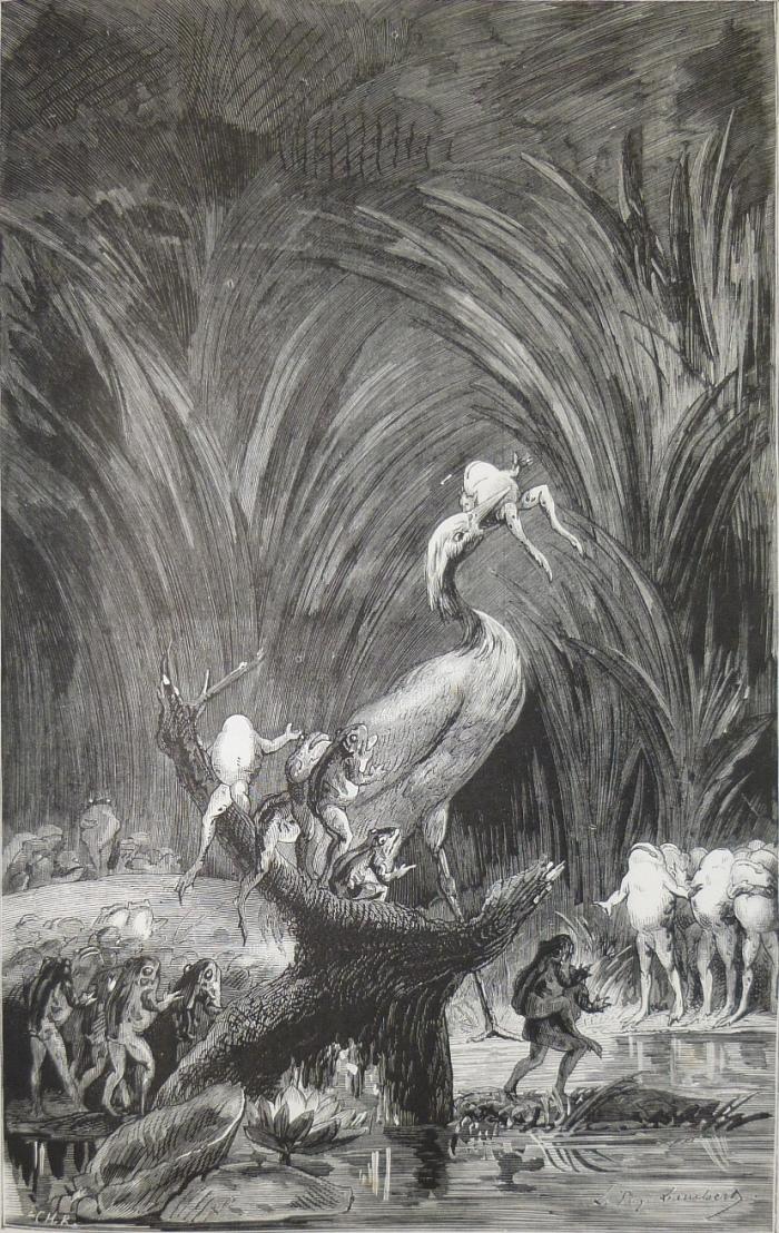 GRENOUILLES ROI LAMBERT