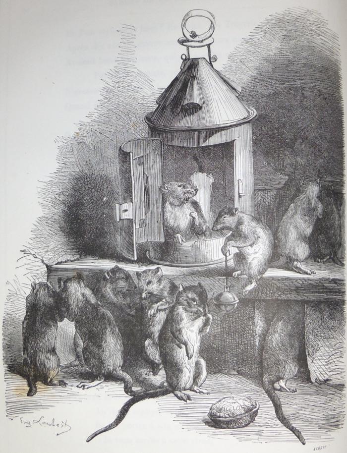 conseil-des-rats-m194-12