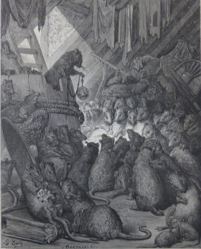 conseil-tenu-par-les-rats