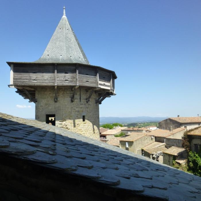 carcassonne10