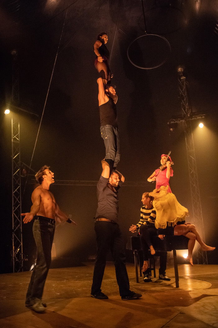 born to be circus.jpg