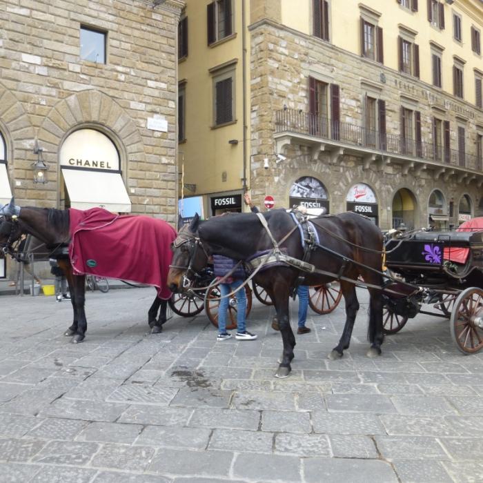 italie641